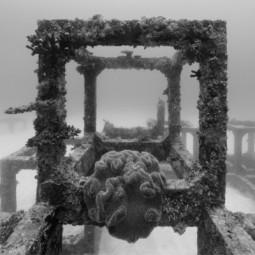 Выставка «Подводные пейзажи»
