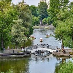 Водные прогулки в парках Москвы 2020