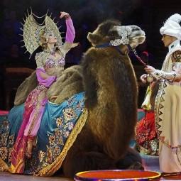 Цирковой спектакль «Песчаная сказка» 2019