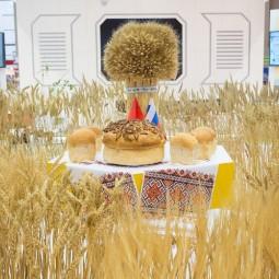 Выставка «Золотая осень» 2017