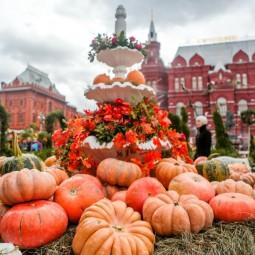 Фестиваль «Золотая осень» 2017