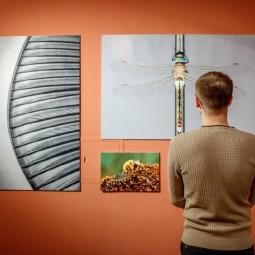 Выставка «Стоп-кадр. О геометрии»