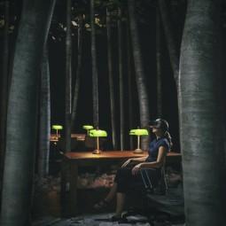 Выставка «Ночь в библиотеке»