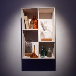 Выставка «Природа вещей»