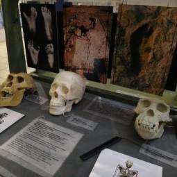 Выставка «Как пройти в люди»