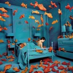 Выставка «Между воображением и реальностью»