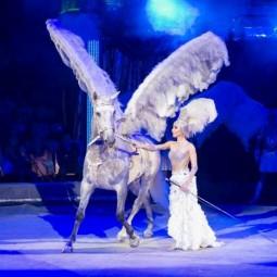 Цирковое шоу «Бурлеск!» 2019