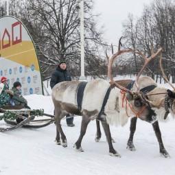 Праздник «Новогодние гуляния» во Дворце пионеров 2019