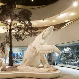 Неделя подарков в Дарвиновском музее 2021