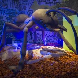 Выставка «Маленькие люди в большом мире насекомых»
