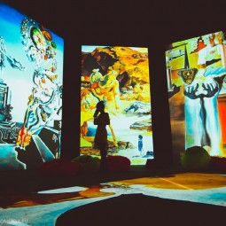 Выставки «Фрида Кало — Ожившие полотна» и «Дали — Живые сны»