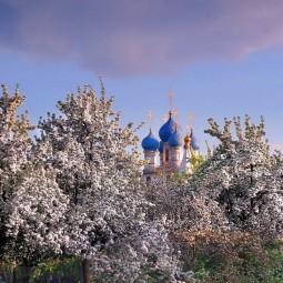 Топ-10 лучших событий навыходные 18 и 19 мая вМоскве