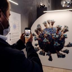Выставка «Жизнь с вирусами»