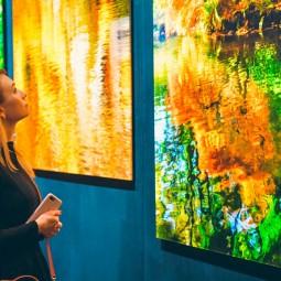 Выставка фотографии и скульптуры в Surround Art Gallery