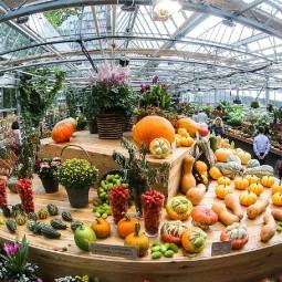 Фестиваль цветов, урожая и искусства «Краски осени» 2018
