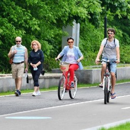 Пункты проката в парках Москвы 2020