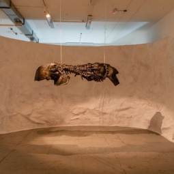 Выставка «Музей искусственной истории»