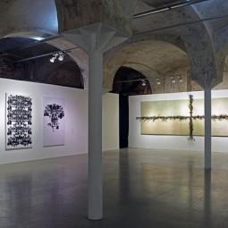 Выставка «Сырое/Вареное»