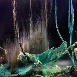 Выставка «Hyperconnected»