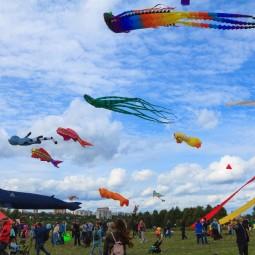 XVI Фестиваль воздушных змеев «Пестрое небо»