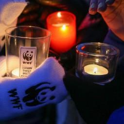 Акция «Час Земли» 2017