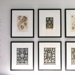 Выставка «Кристаллография Малевича и Леонидова»