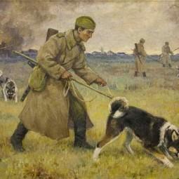 Виртуальная выставка «Животные на фронтах войны»
