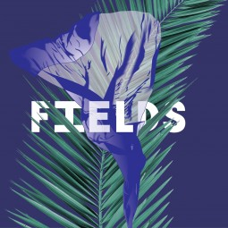 Фестиваль авангардной музыки Fields 2016
