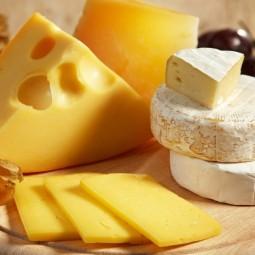 VII Фестиваль сыра на ВДНХ
