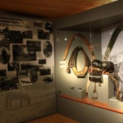 Выставка «Первый на селе работник»