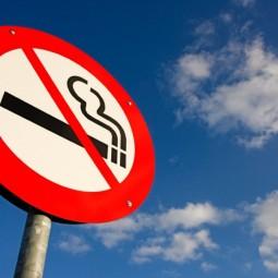День отказа от курения в парке «Сокольники» 2016