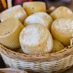 XII Фестиваль сыра на ВДНХ