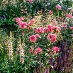 Фестиваль садов и цветов «Moscow Flower Show» 2019