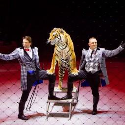 Цирковое шоу «OFU с участием братьев Запашных» 2020/2021