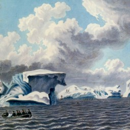 Выставка «От Антарктиды до Магелланова пролива»
