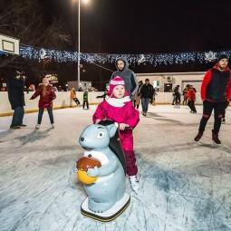 «Live!Каток» в Воронцовском парке 2020-2021