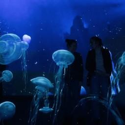 Интерактивная мультимедийная выставка «Океан юрского периода»