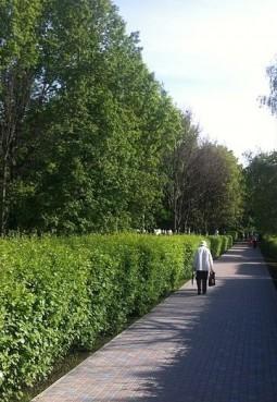 Парк «Печатники»