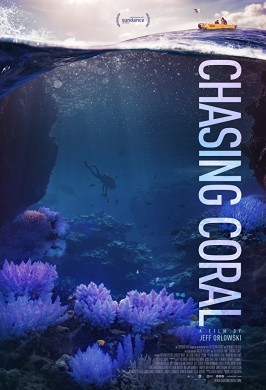 В поисках кораллов