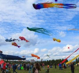 XVII Фестиваль воздушных змеев «Пестрое небо»