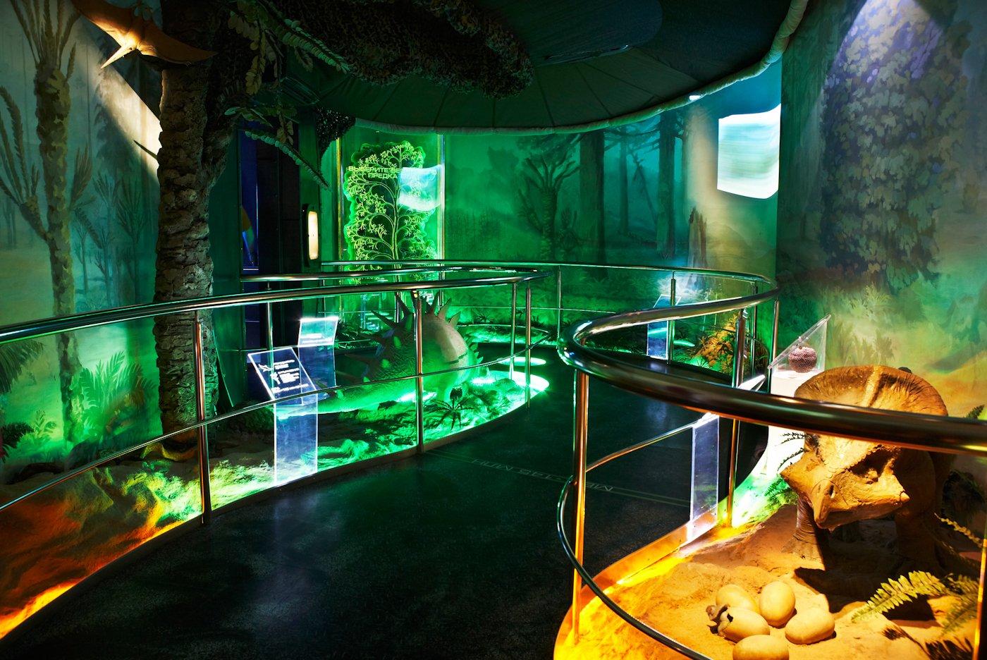 «День эволюции» вДарвиновском музее 2016
