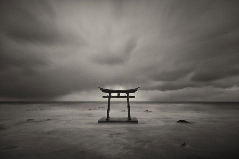Выставка «Фукусима: надежда иотчаяние»