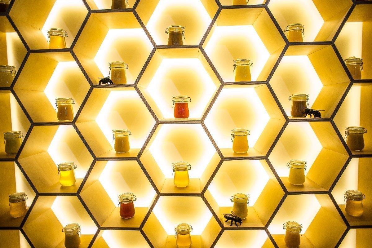 Музей «Пчеловодство» наВДНХ