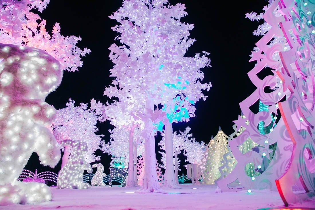 Новогодняя ночь 2019 в«Сокольниках»
