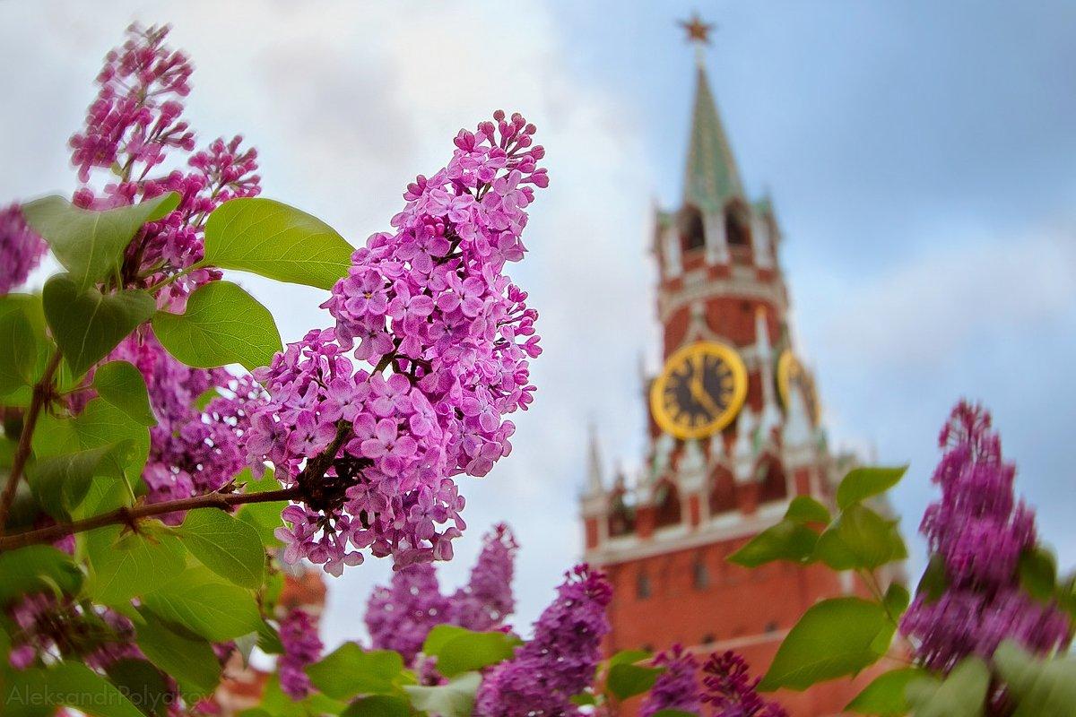Топ-10 лучших событий навыходные с1 по5 мая вМоскве