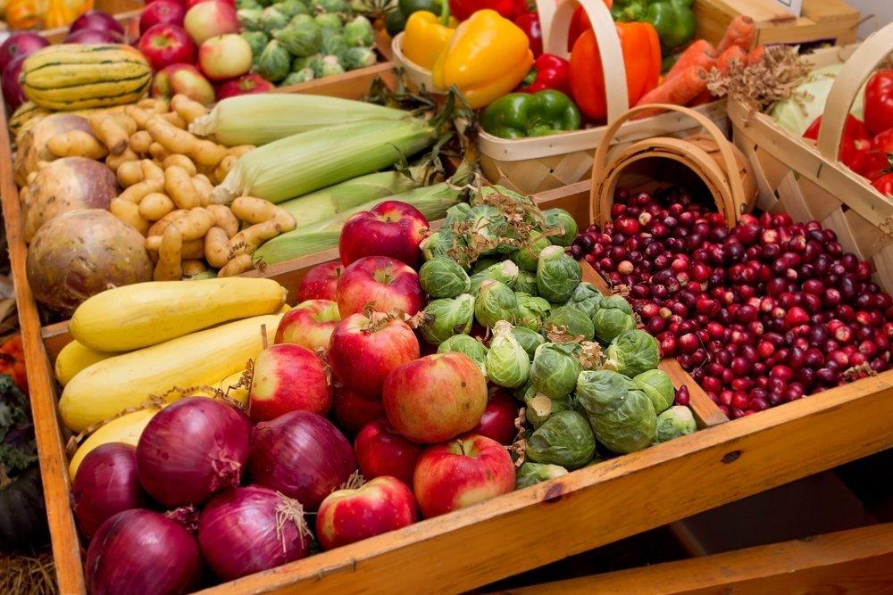 Праздник Урожая наЛетнем рынке «Фермерия»