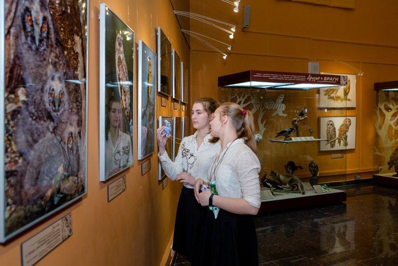 День совы вДарвиновском музее 2020