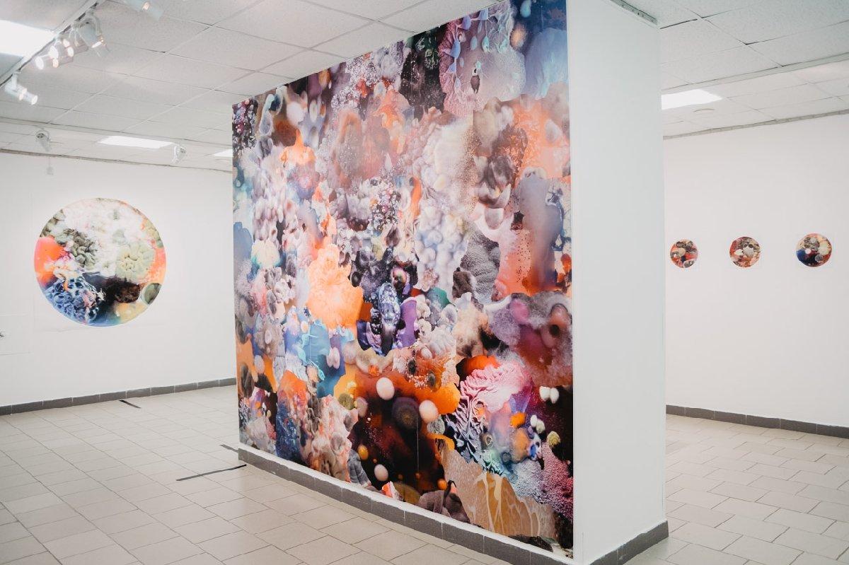 Выставка «Воздух»