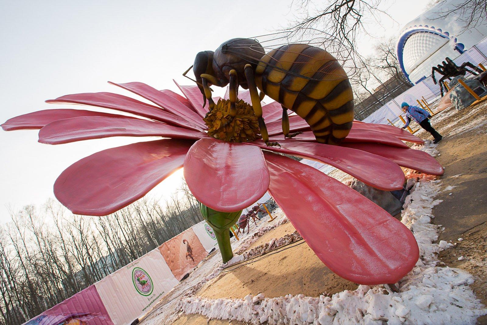 Парк гигантских насекомых наВДНХ