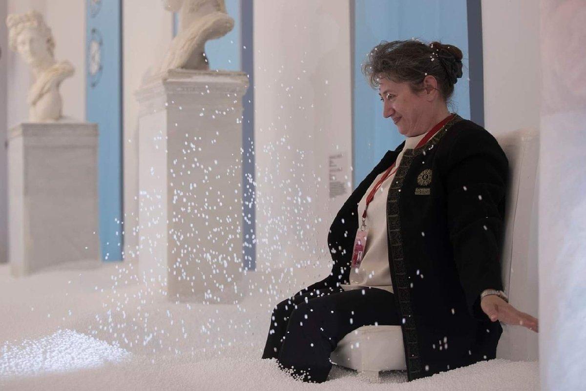 Выставка «Политика снега»